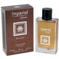 Туалетная вода Dina Cosmetics Imperial Silver Brown, 100 мл